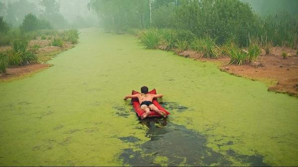 algae-lakeweed-lake-pond-23.png