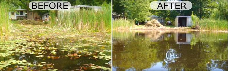 before-after-lake-pond-weed-cutting-tools-reviews.jpg