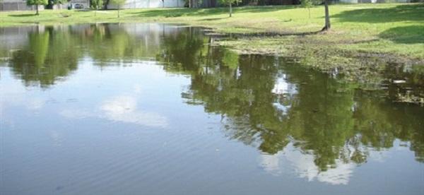 lake-pond-muck-22.jpg